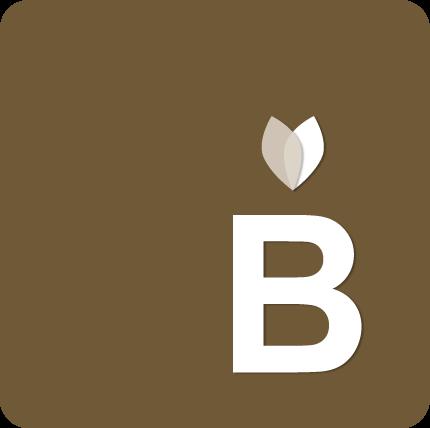 Buse GmbH